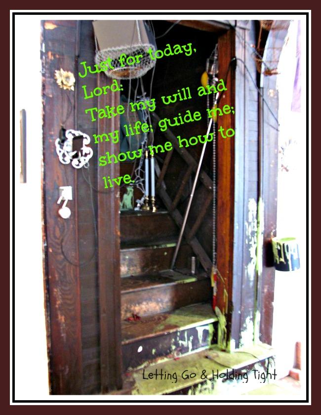 the eleventh step a safe perch